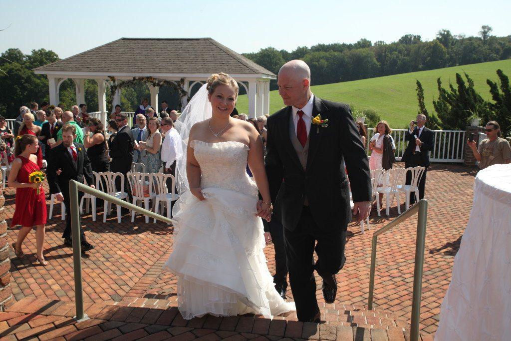 Wedding on pavillion
