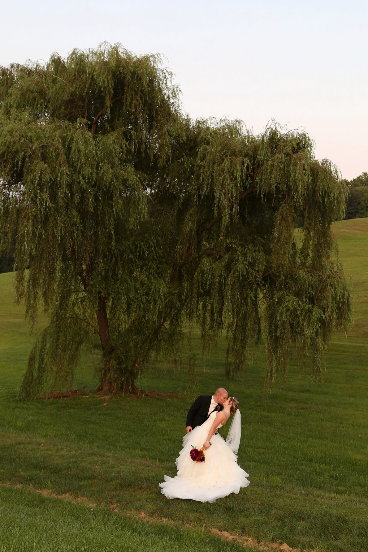 Bride and groom pose beside old willow tree after their wedding