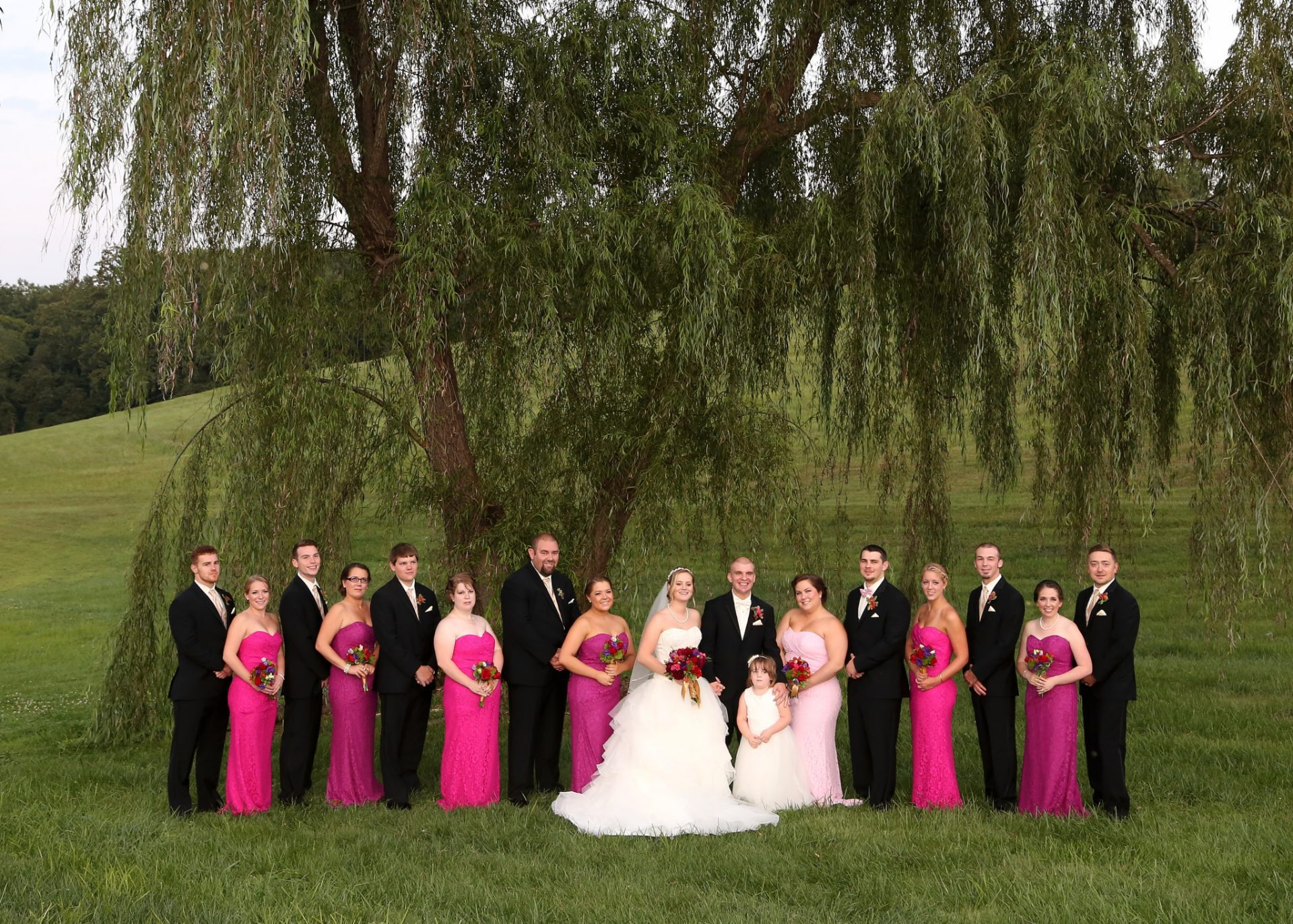 Bridal party poses in front of old willow tree at Morningside Inn, wedding venue in maryland