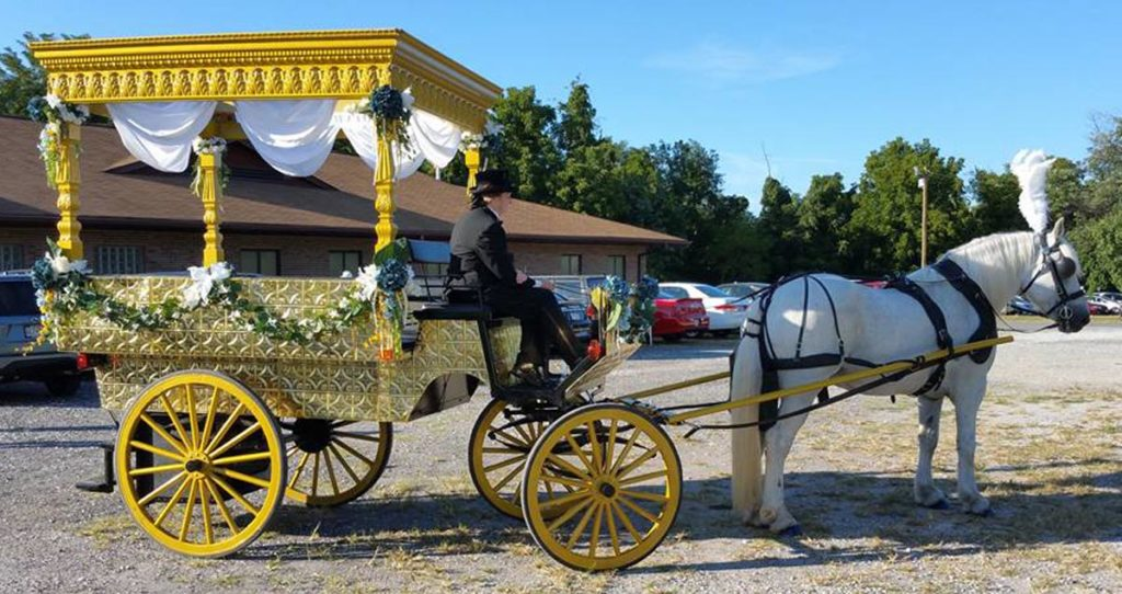 wedding horse carriage rental